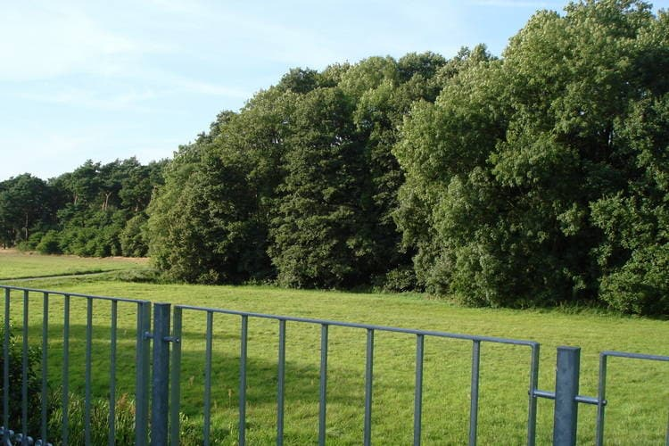 Ferienwohnung Voigtsmühle 1 (410749), Friedland, Oder-Spree, Brandenburg, Deutschland, Bild 21
