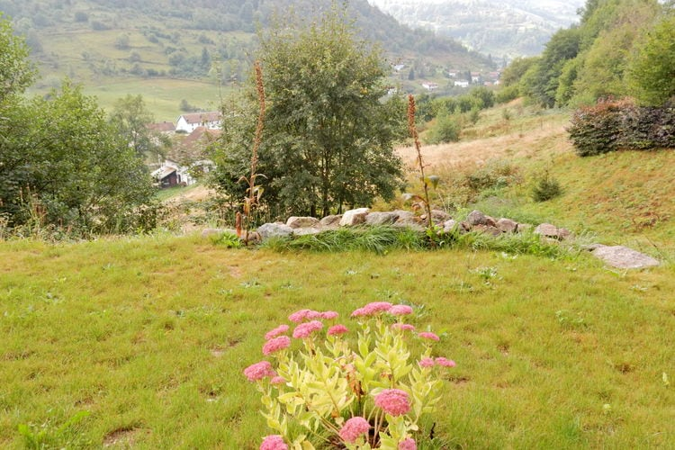 Ferienwohnung Chalet Rondins 4 p (410620), La Bresse, Vogesen, Lothringen, Frankreich, Bild 24