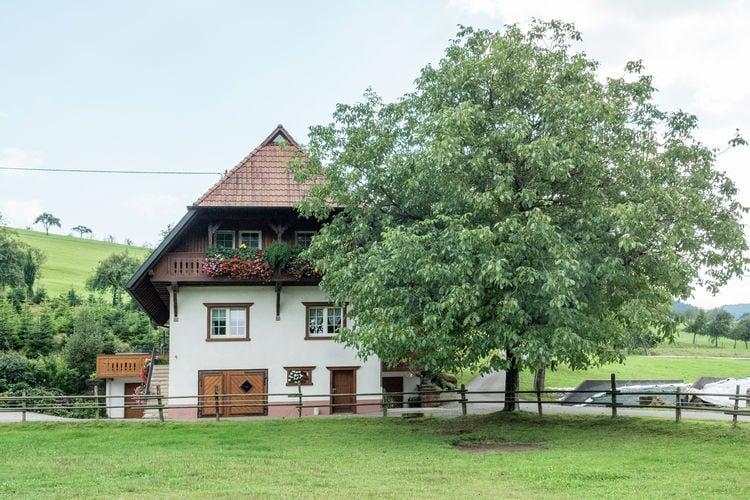 Appartement    Oberharmersbach  Ferien auf dem Bauernhof