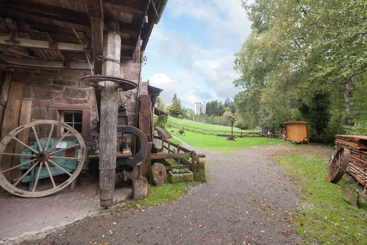 Ferienwohnung Waldacher Hof (409143), Waldachtal, Schwarzwald, Baden-Württemberg, Deutschland, Bild 26