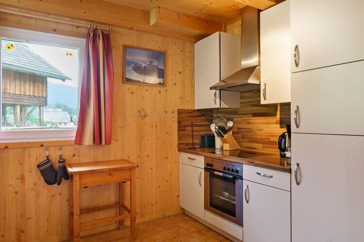 vakantiehuis Oostenrijk, Steiermark, Sankt Georgen ob Murau vakantiehuis AT-8861-17