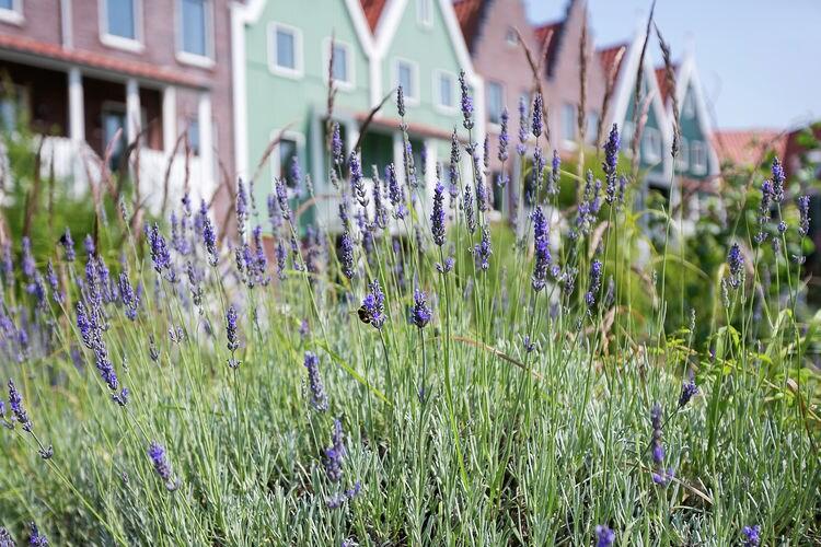 Ferienwohnung Marinapark Volendam 8 (410863), Volendam, Waterland und Zaanregion, Noord Holland, Niederlande, Bild 24