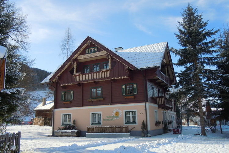 Vakantiehuizen Oostenrijk   Steiermark   Vakantiehuis te huur in Pruggern   met wifi 10 personen