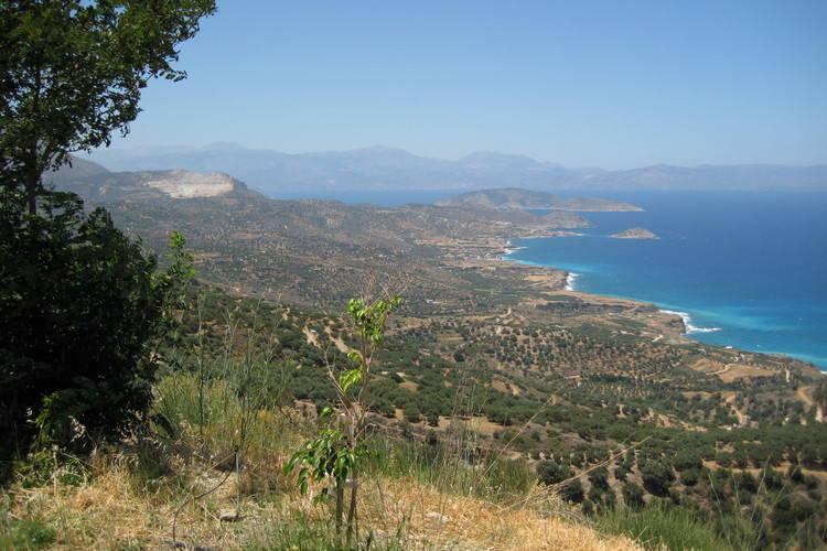 Ferienhaus Villa Alexandra (422894), Makriyialos Kriti, Kreta Südküste, Kreta, Griechenland, Bild 23