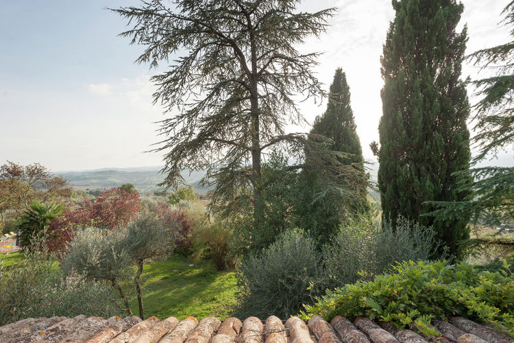 Holiday house Bachi da Seta (433139), Todi, Perugia, Umbria, Italy, picture 34
