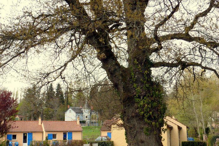 Sta caravan Frankrijk, Bourgogne, St. Honoré-Les-Bains Sta caravan FR-58360-16