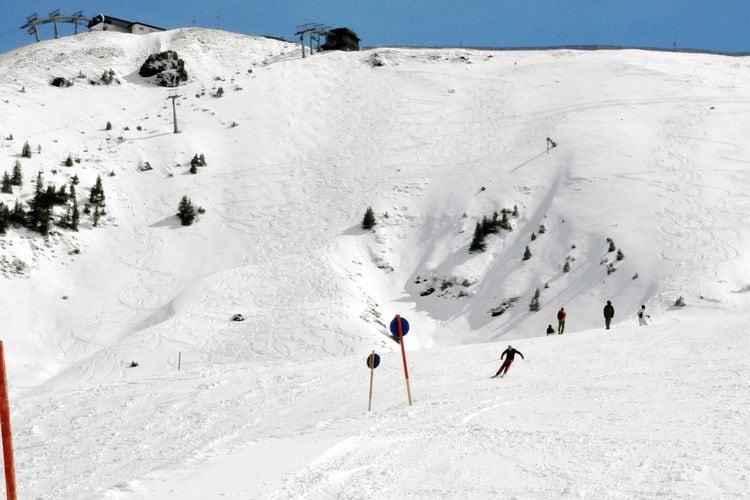 Almhütte Chalet Hochbrunn direkt an der Piste - Area - Winter