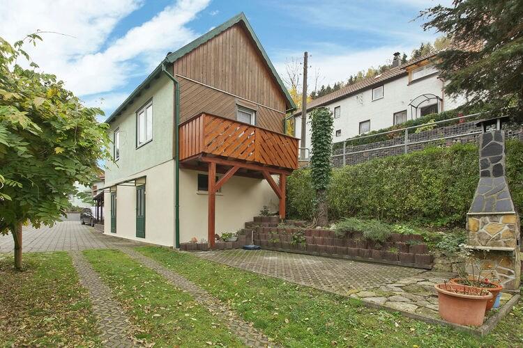 vakantiehuis Duitsland, Thuringen, Langenbach vakantiehuis DE-98667-16