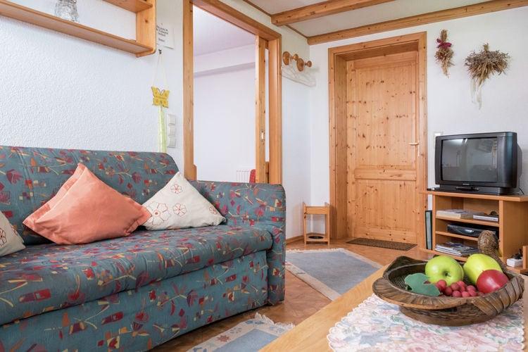 Appartement Duitsland, Baden-Wurttemberg, Furtwangen-Neukirch Appartement DE-78120-06