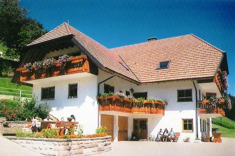 Appartement Duitsland, Baden-Wurttemberg, Hofstetten Appartement DE-77716-06