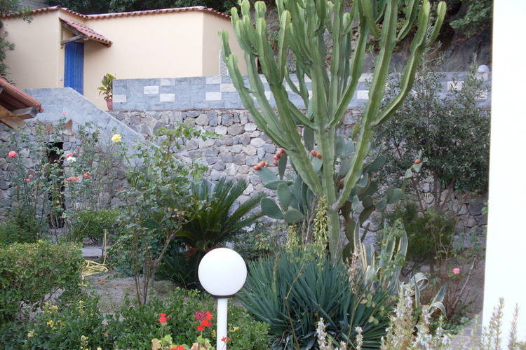 Ferienhaus Barano (432130), Barano d'Ischia, Ischia, Kampanien, Italien, Bild 26