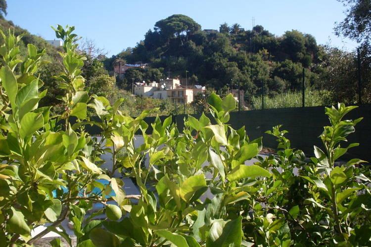 Ferienhaus Barano (432130), Barano d'Ischia, Ischia, Kampanien, Italien, Bild 29