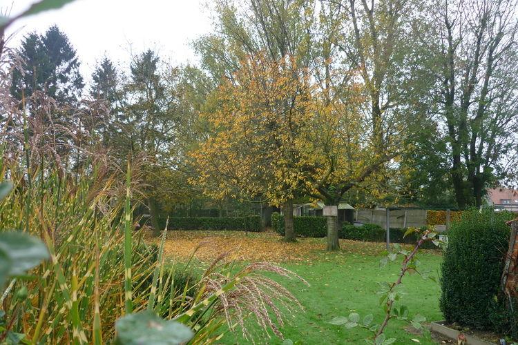 Ferienhaus Happy Moments (437047), Ruiselede, Westflandern, Flandern, Belgien, Bild 23
