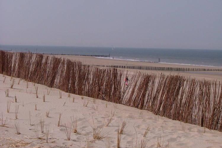 Ferienwohnung Gemütliches Appartement in Seeland am Meer (442088), Nieuwvliet, , Seeland, Niederlande, Bild 32