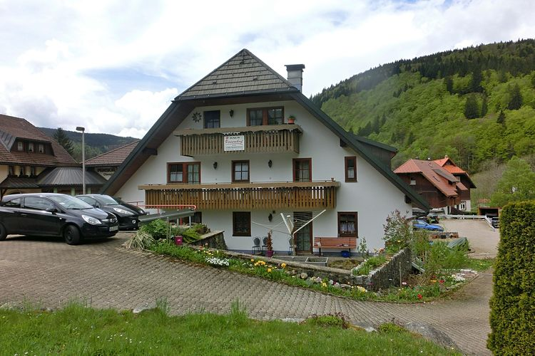 Appartement  met wifi  Todtnau-BrandenbergSchwarzwald