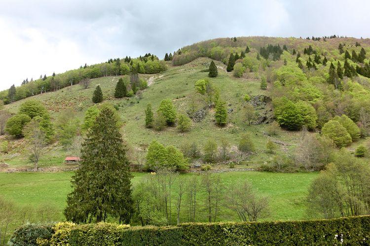 Ferienwohnung Schwarzwald (440895), Todtnau, Schwarzwald, Baden-Württemberg, Deutschland, Bild 15