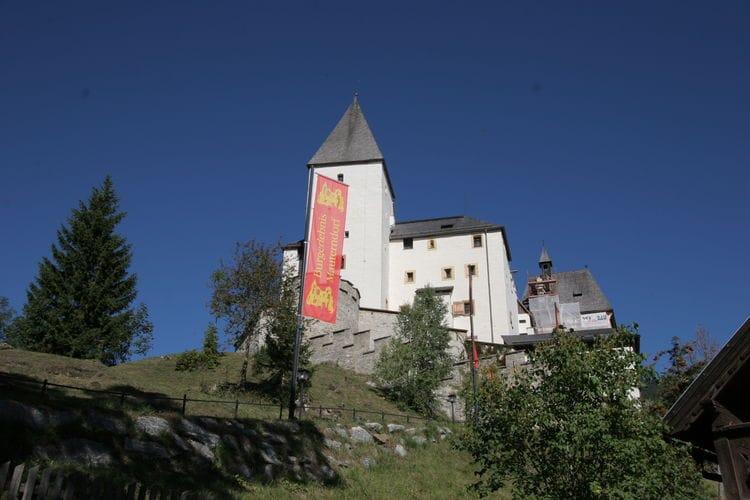 Ferienwohnung Appartement Silverjet (442018), St. Margarethen im Lungau, Lungau, Salzburg, Österreich, Bild 28