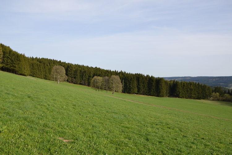 Ferienwohnung Titisee (446942), Lenzkirch, Schwarzwald, Baden-Württemberg, Deutschland, Bild 33