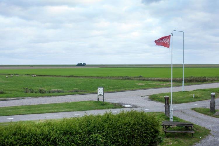Boerderij Nederland, Friesland, Holwerd Boerderij NL-9151-05