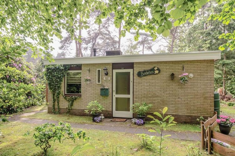 vakantiehuis Nederland, Overijssel, Ommen vakantiehuis NL-7735-01