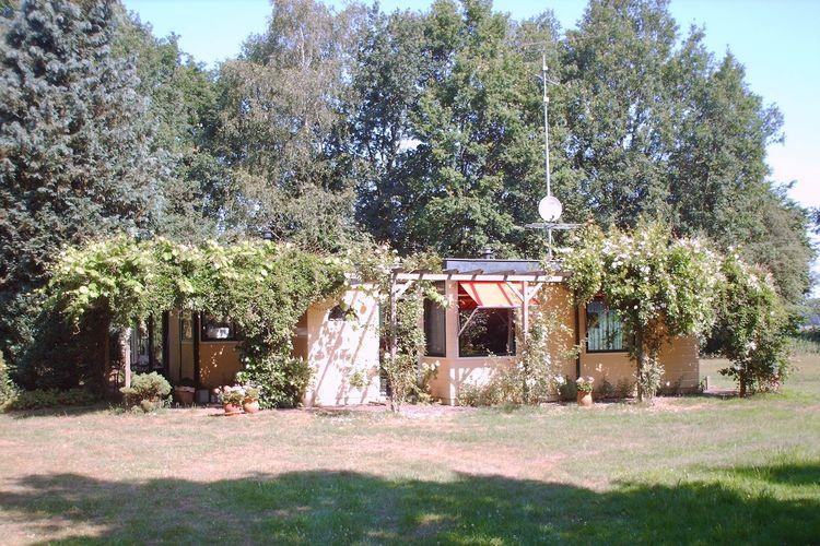 Heino Vakantiewoningen te huur Vakantiewoning met een bijzonder groene ligging op 3000m2 eigen grond bij Heino