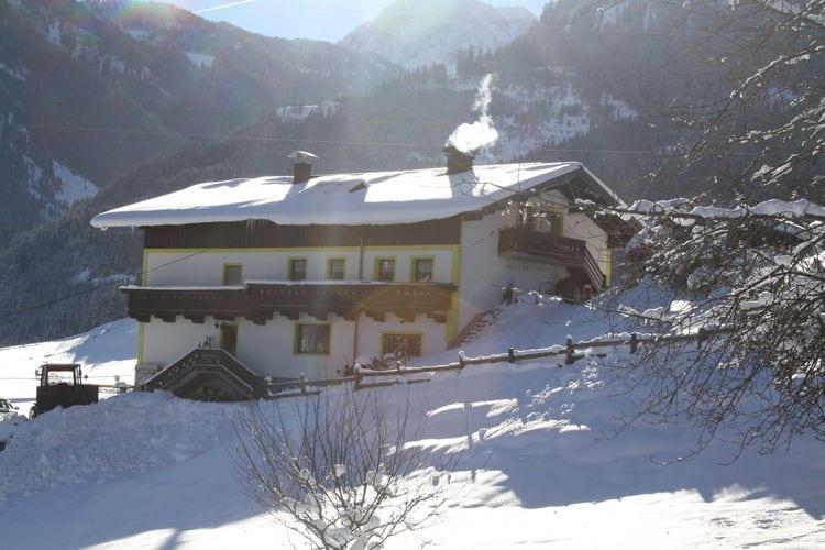 Ferienwohnung Panoramablick XL (445445), Embach, Pinzgau, Salzburg, Österreich, Bild 5