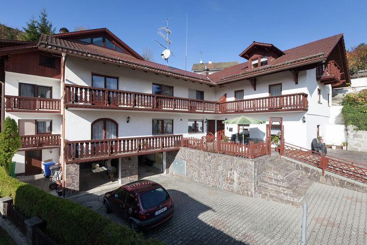 vakantiehuis Duitsland, Beieren, Saldenburg vakantiehuis DE-94163-03