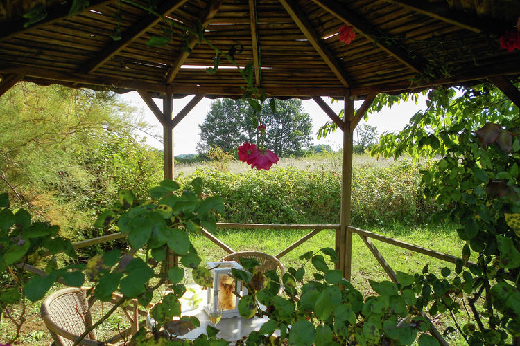 Ferienhaus Lou Peyrol (460265), Paleyrac, Dordogne-Périgord, Aquitanien, Frankreich, Bild 25