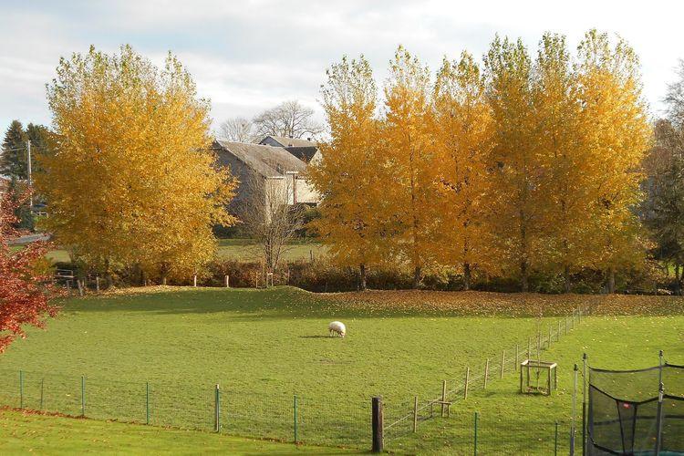 Ferienhaus Amande (463931), Bertogne, Luxemburg (BE), Wallonien, Belgien, Bild 33