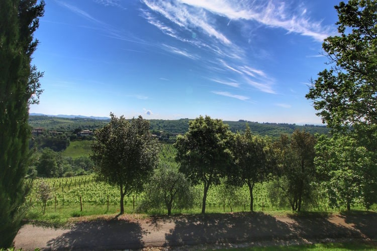 Ferienwohnung Ovile (465099), Castelnuovo Berardenga, Florenz - Chianti - Mugello, Toskana, Italien, Bild 39