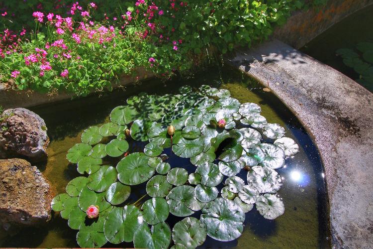 Ferienwohnung Ovile (465099), Castelnuovo Berardenga, Florenz - Chianti - Mugello, Toskana, Italien, Bild 37