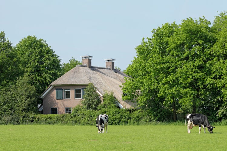 Luxe in Drenthe