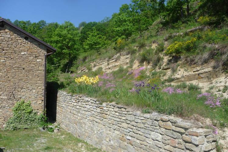 Ferienhaus Casa Bricchetto (470969), Mombarcaro, Cuneo, Piemont, Italien, Bild 20
