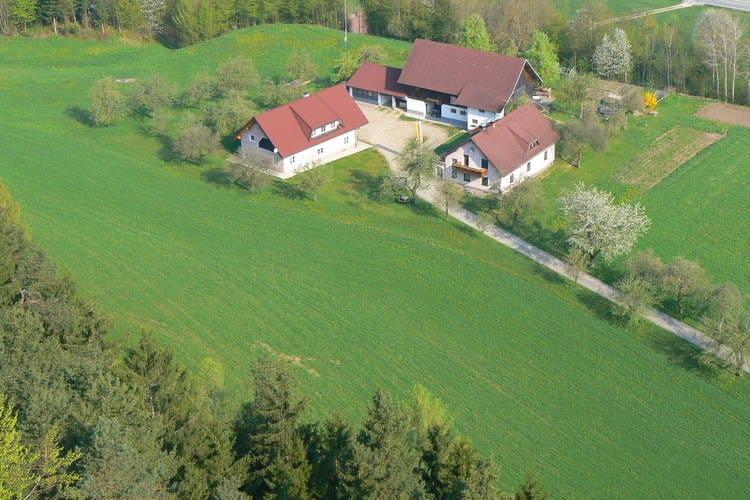 Vakantiehuizen Oostenrijk | Kaernten | Appartement te huur in Neuhaus-bei-Lavamund   met wifi 6 personen
