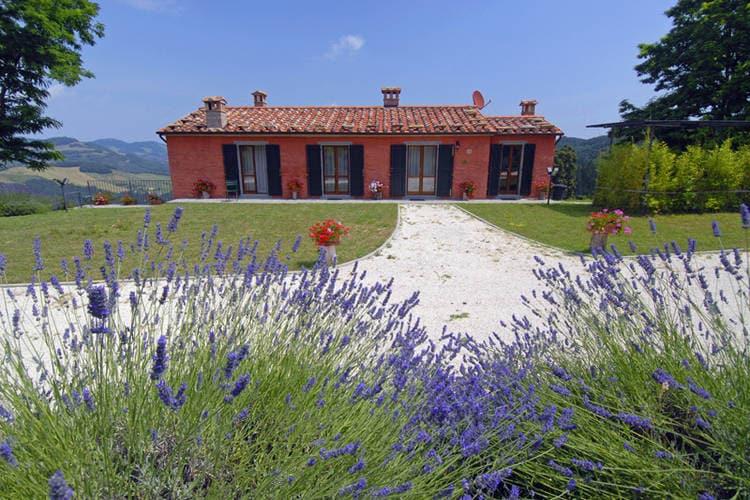 Mazzini  Tuscany Elba Italy