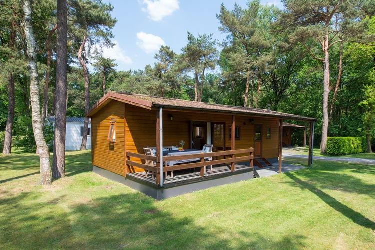 Vakantiehuizen Oisterwijk te huur Oisterwijk- NL-5062-17   met wifi te huur