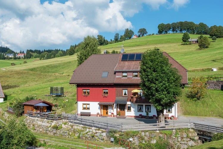 Duitsland | Baden-Wurttemberg | Appartement te huur in Todtnauberg   met wifi 2 personen