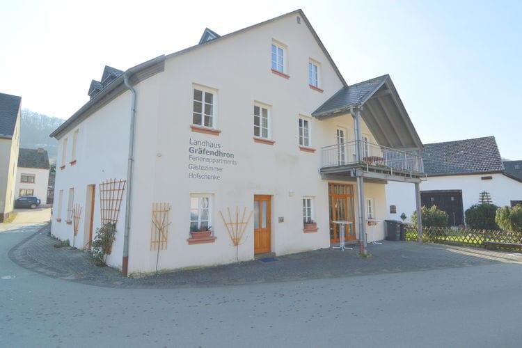Appartement Duitsland, Hunsruck, Gräfendhron Appartement DE-54426-08