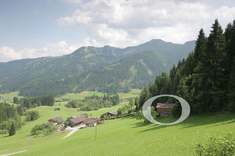 Ferienwohnung Berghuette (490224), Oberau (AT), Wildschönau, Tirol, Österreich, Bild 4