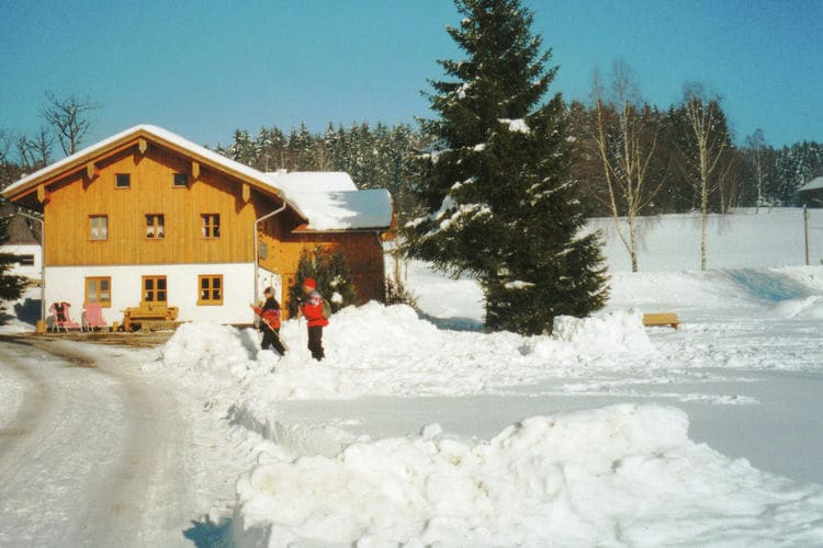 vakantiehuis Duitsland, Beieren, Viechtach ot Wiesing vakantiehuis DE-94234-13