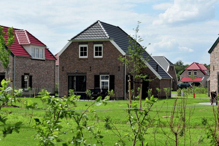 Villa met zwembad met wifi  Roggel  Buitenhof De Leistert 1