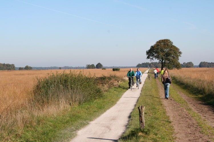Bungalow Nederland, Drenthe, Ruinen Bungalow NL-7963-01
