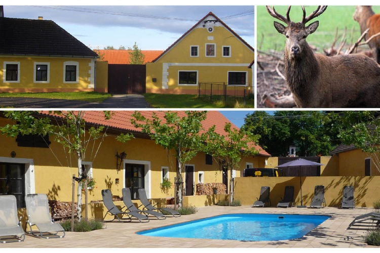Vakantiehuis met zwembad met wifi  Chmelna-KemeChmelna