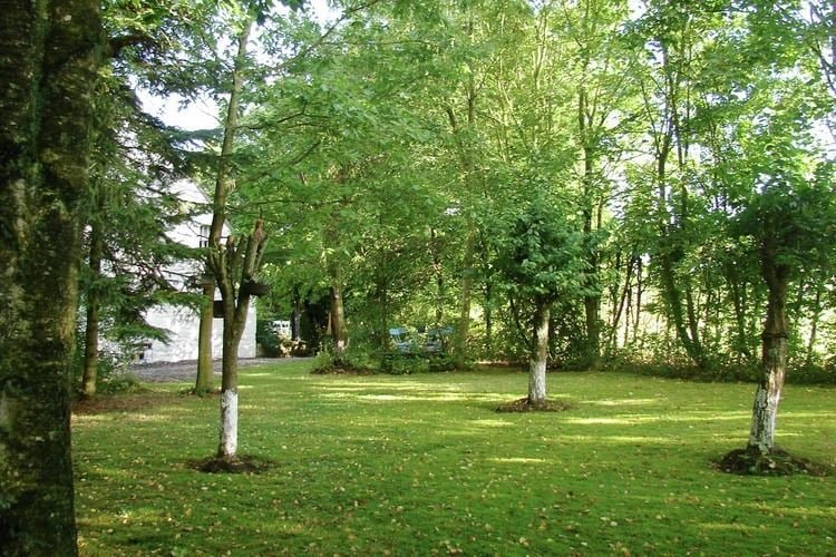 Ferienhaus Fydolyne House (499048), Froidchapelle, Hennegau, Wallonien, Belgien, Bild 36