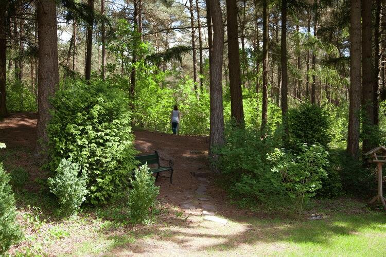 Ferienhaus Landgoed 't Wildryck (785194), Dieverbrug, , Drenthe, Niederlande, Bild 23