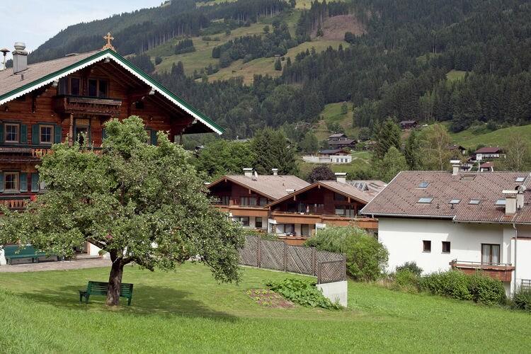 Ferienwohnung Panorama Chalet 11 (498686), Mittersill, Pinzgau, Salzburg, Österreich, Bild 26