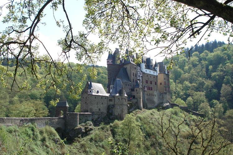 Ferienwohnung Schwalbennest (601357), Morbach, Hunsrück, Rheinland-Pfalz, Deutschland, Bild 26