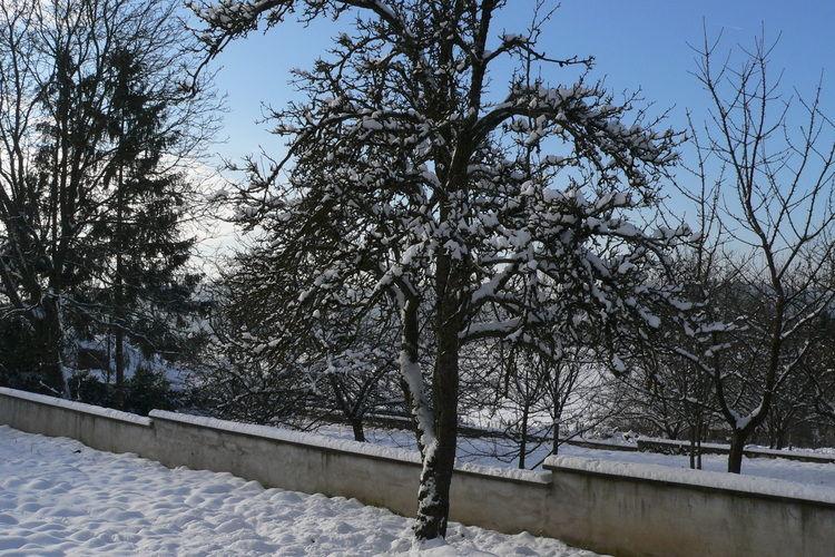 Ferienwohnung La Ferme des choucas (563981), Aisey et Richecourt, Haute-Saône, Franche-Comté, Frankreich, Bild 26