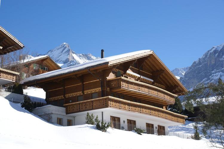 Grindelwald 16 - Apartment - Grindelwald