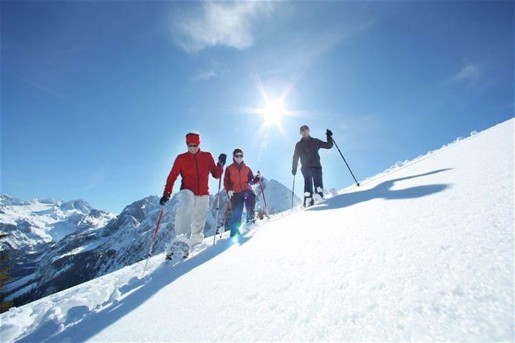 Ferienwohnung Luxery Salzkammergut Chalet 3 (580241), Obertraun, Salzkammergut, Oberösterreich, Österreich, Bild 23